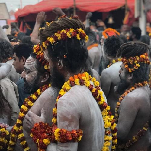 Procession of Sadhus - Kumbha Mela - India